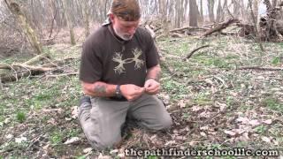 African Bird Trap