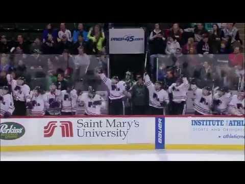 MN High School Hockey Tournament Tribute