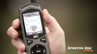 Border Patrol Tc1 By De Systems Features And Review - Sportingdogpro.com