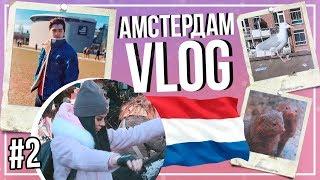 AMSTERDAM || МЫ СДЕЛАЛИ ТАТУ? Зоопарк!