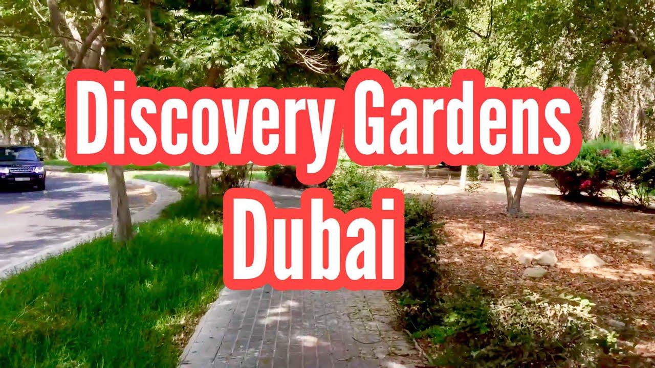 discovery gardens dubai - Dicovery Garden