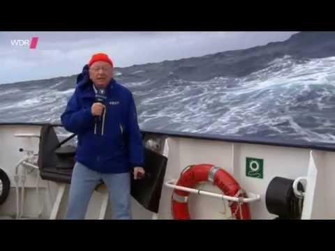 Abenteuer Eismeer - Mit dem Schiff in die Antarktis