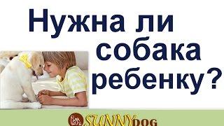 Нужна ли собака ребенку? Собака для ребенка - нужна ли на самом деле и каквыбрать