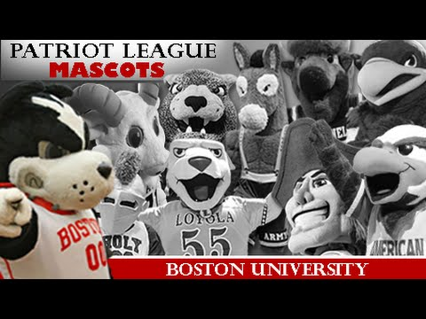 Patriot League Mascots: Boston University
