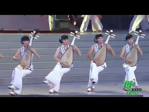 Shanghai World Expo Closing Ceremony Concert-  Fusion of Art and Music