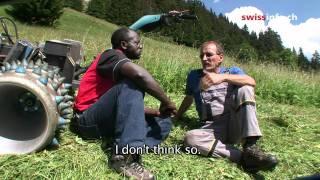 An African take on Swiss alpine farming