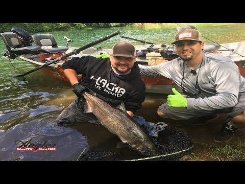 McKenzie River Spring Chinook Fishing