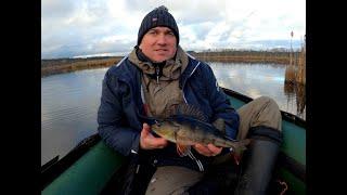 Окунь на секретном Озере 31 Октября 2020 Рыбалка на джиг