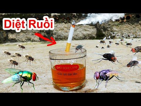 Kỳ lạ ! Cách Diệt Ruồi & Đuổi Ruồi Hiệu Quả Với Ly Nước Thần Kỳ Này / Mẹo Experiment : Fly Trap