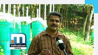 John George Scores Big In Pepper Farming| Mathrubhumi News