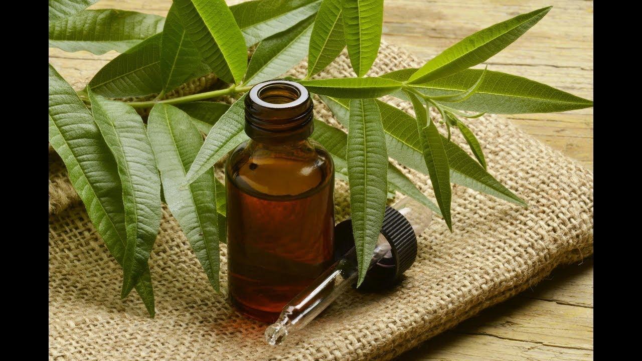 Cómo Quitar Pólipos Nasales En El Tratamiento Natural Del Hogar