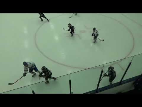 2018 01 13 2006 Rochester Coalition vs Toronto Marlies 0 A Bunch