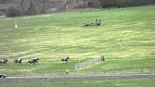 Maryland Hunt Cup 2015