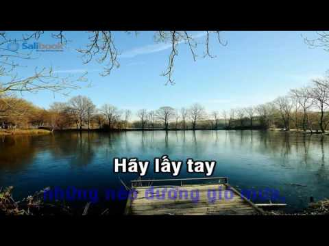 [Karaoke TVCHH] 197- BÀN TAY MANG DẤU ĐINH - Salibook