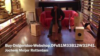 Buy Didgeridoo DFs51M33B12W31P41