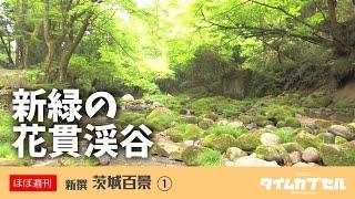 茨城県内の素敵な風景映像を「ほぼ週刊」でお届けいたします。 第一回は...