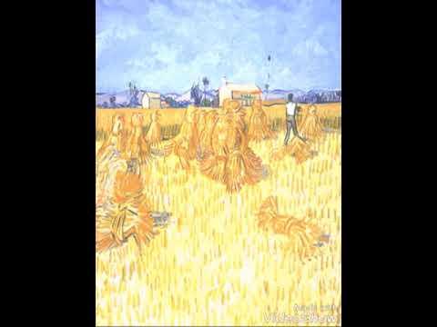 قصة حبة القمح للكاتب نعيم السالم