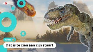 De T. Rex liep een stuk langzamer dan gedacht