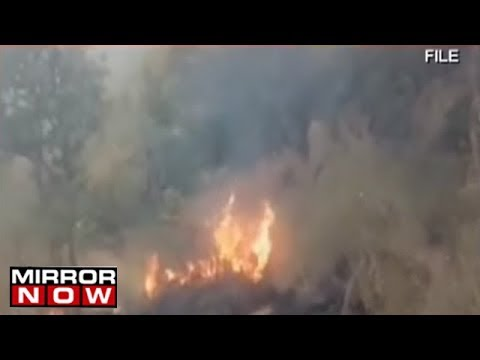 Tamil Nadu Government Submits Interim Report To NGT In Theni Forest Fire Case