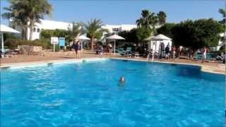 Наш отдых в Шарм Эль Шейхе 2012.wmv(Отдых в Египте, Красное море, Domina Coral Bay, 2012 Our rest in Egypt, Sharm El Sheikh, Red Sea, 2012 Авторские права на звуковые дорожки:..., 2012-03-13T19:30:24.000Z)