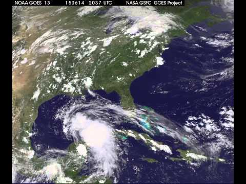 System 91L Develops in the Gulf of Mexico