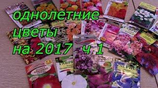 однолетние цветы  2017(, 2016-12-16T03:37:47.000Z)