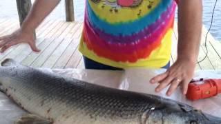 How To Catch, Clean, & Prepare Alligator Gar : River Monsters