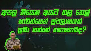 අපල වලට තල තෙල් වලින් ප්රථිලාභයක් ලබා ගන්න පුලුවන්ද? | Piyum Vila | 26 - 08 -2020 | Siyatha TV Thumbnail