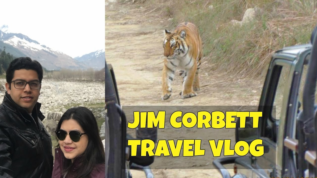 Jim Corbett National Park | Tiger spotted in Safari | Corbett resort tour | India Travel vlog 2017