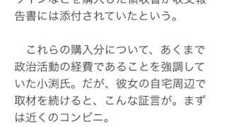 """9月の内閣改造の""""目玉""""として経済産業大臣に就任したばかりの小渕優子議..."""