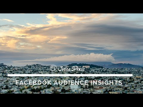 Social media strategy Facebook Audience Insight