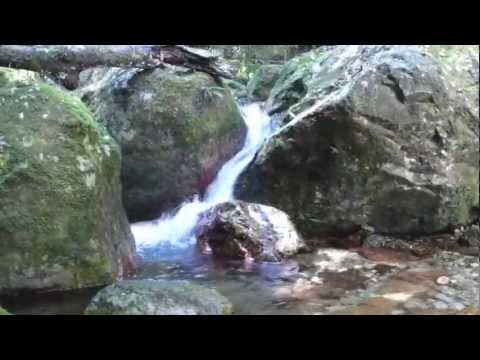 Hiking Pico Bonito