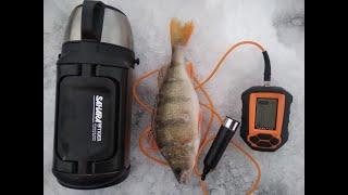 Ловля окуня с эхолотом ПРАКТИК Зимняя рыбалка на мормышку Щуки ОТДЫХАЮТ ОКУНИ радуют Глухозимье