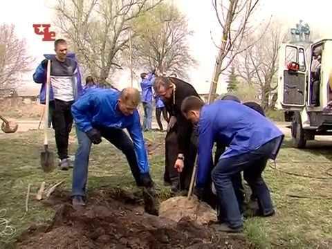 1. «ЕвроХим» Новомосковск. Высадка деревьев. Акция «Кислород городам»