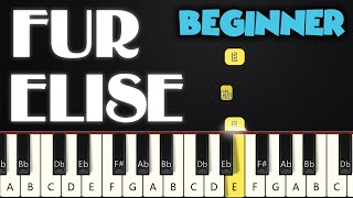 Fur Elise - Beethoven (Right Hand only)   BEGINNER PIANO TUTORIAL + SHEET MUSIC by Betacustic