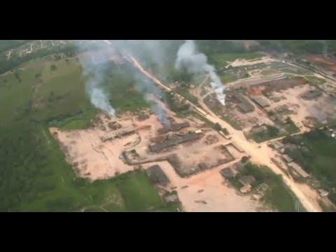 Desmatamento da Amazônia causa avanço da malária no Brasil, diz pesquisa