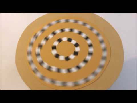 Spiral Illusion Rotorelief VSW26 Marcel Duchamp Inspired