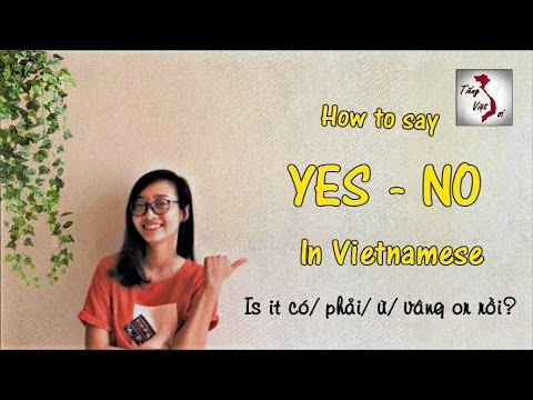 Learn Vietnamese with TVO | YES/NO in Vietnamese