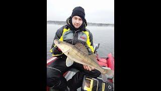 Рыбалка в кайф Тренировки к Осеннему хищнику 2019 года Десногорское водохранилище