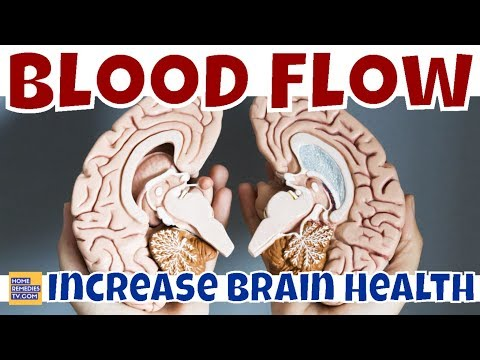 How to INCREASE BLOOD FLOW To BRAIN? 5 WAYS to IMPROVE BRAIN CIRCULATION and Your BRAIN HEALTH