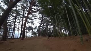 부산 아홉산숲 소니 액션캠과 함께 다녀왔습니다.