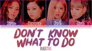 BLACKPINK - DON'T KNOW WHAT TO DO color coded lyrics 가사 | ENG, HAN, ROM