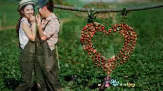 My Darling - Ty Phong