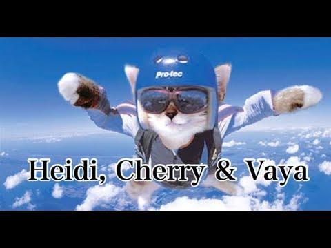 Heidi, Cherry & Vaya Skydive - Children's Bedtime Story/Meditation