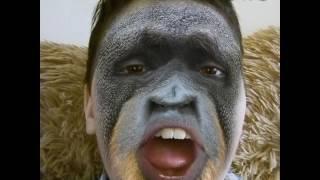 лица животных  (msqrd)