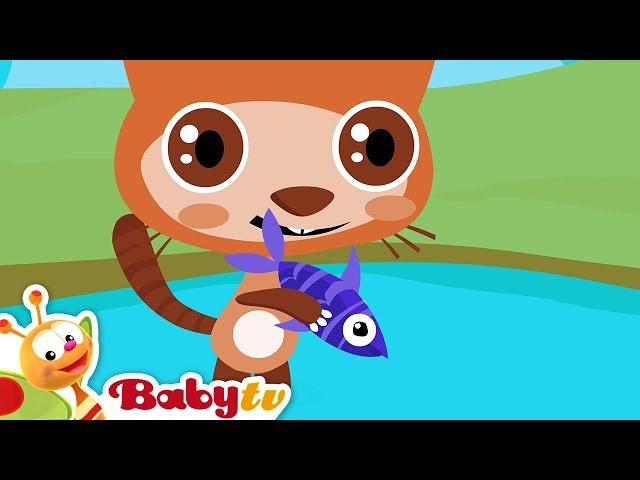 1,2,3,4,5 Once I Caught a Fish Alive, Counting Song | BabyTV