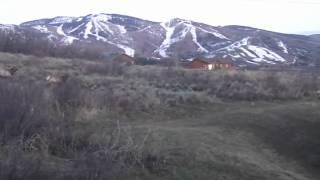 Elk April 9th 2012.m4v Thumbnail