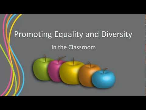 Promoting Equality and Diversity in the Classroom