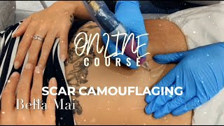 Online Scar Camouflage Course