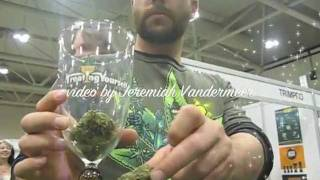The 2nd-Annual Treating Yourself Medical Marijuana and Hemp Expo